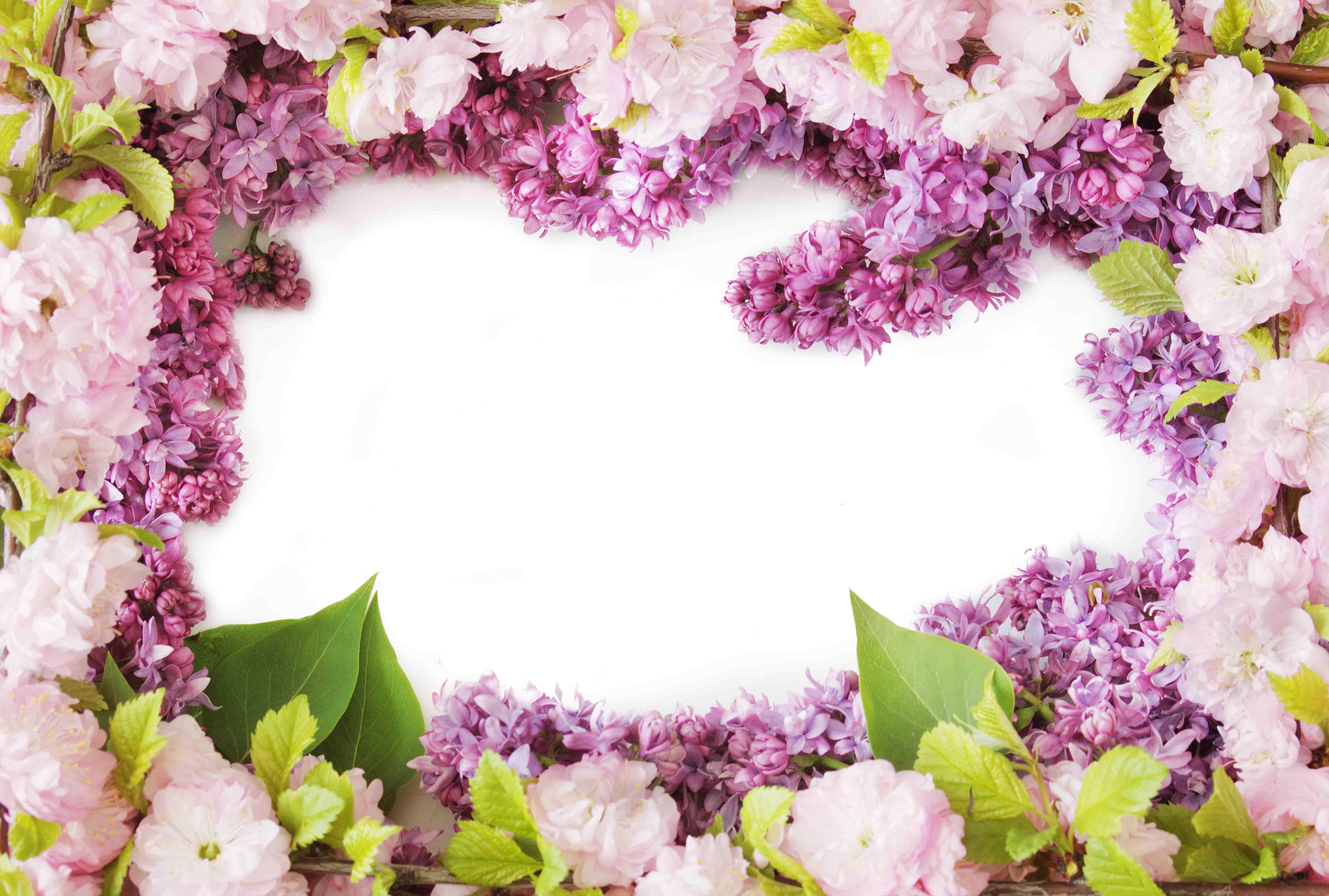 Открытка с рамкой из цветов
